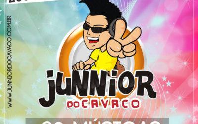 COLETÂNEAS JR DO CAVACO 2006/2010