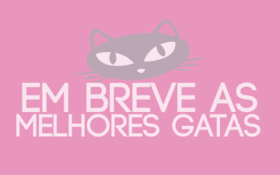 GATAS, AS MELHORES PAGODEIRAS DO BRASIL