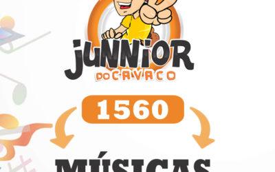 + DE 1560 MÚSICAS ANTIGAS DE PAGODE