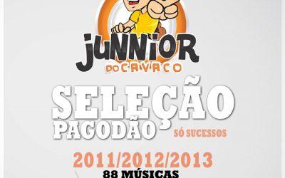 COLETANEAS JUNNIOR DO CAVACO – 2011 até 2013 +88 MUSICAS