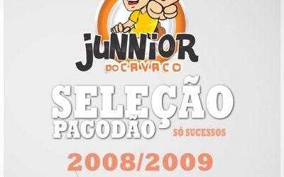 SELEÇÃO DE PAGODE 2008/2009